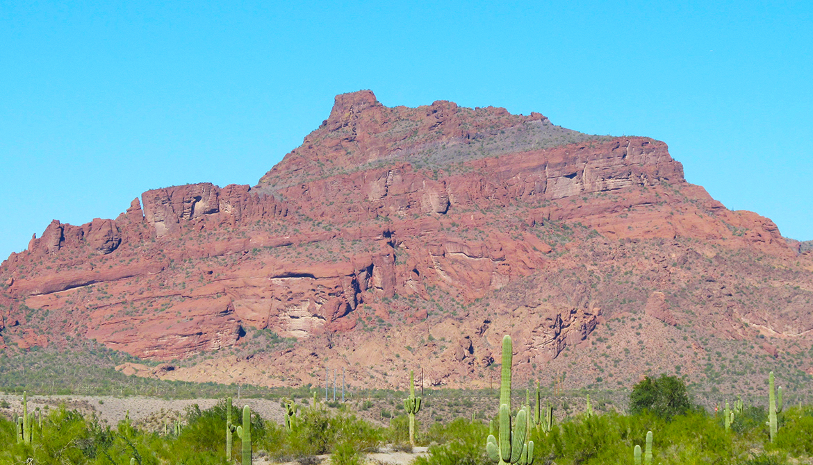 Red Mountain Mining Inc Mesa Az
